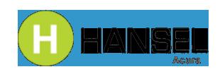Logo | Hansel Acura